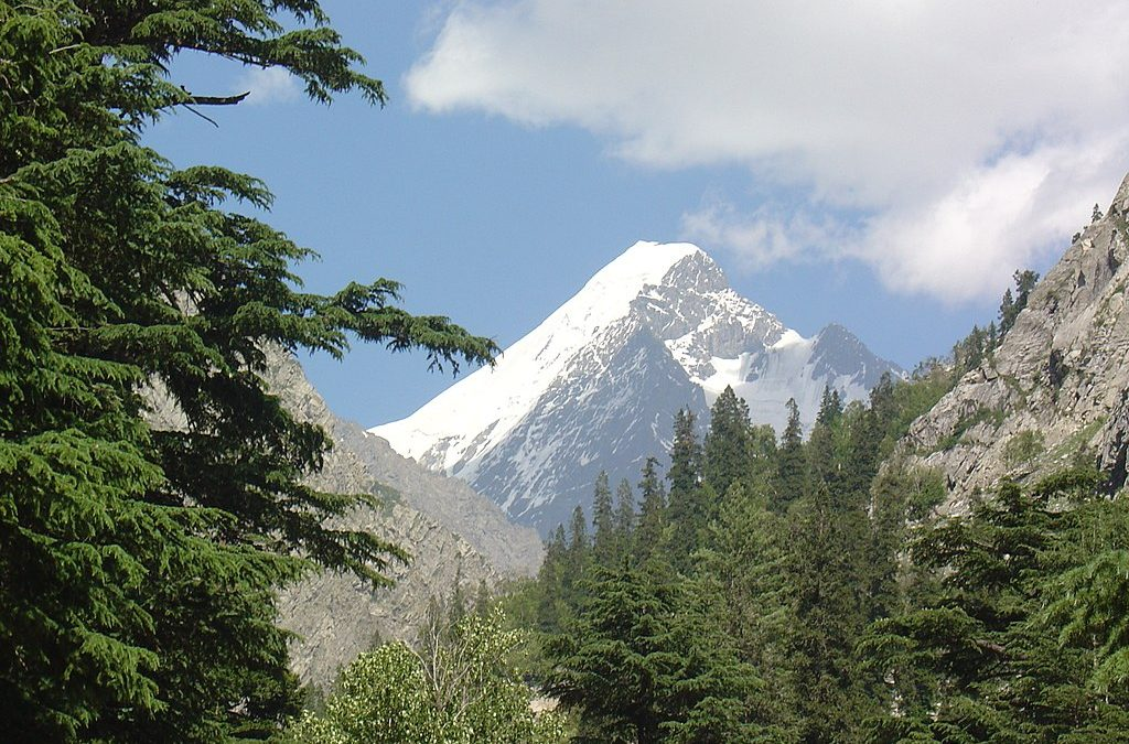 History made-First Pakistani ascent of PakPeak FalakSar (5,918m) in Swat